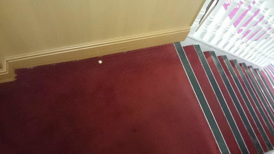 Kings Cross Inn Hotel: Bandaid with blood on stairs.