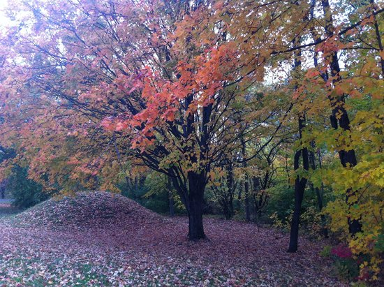 Chillicothe, OH: Autumn mound