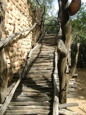 Stone Camp in Mkhaya Game Reserve: Trap naar Kirke's schuilhut, april 2014