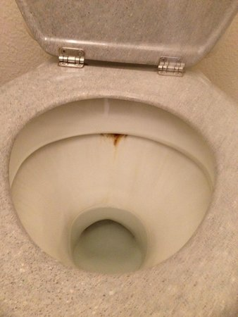 Villa Bellagio - Blois : WC - der Standard der Suberkeit gilt für alles andere auch