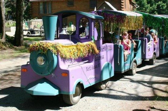 Yogi Bear's Jellystone Park Camp-Resort at Paradise Pines: train decorated for Mardi Gras