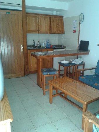 Monte Verde Apartments: Sitting room in 1-bedroom apartment