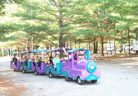 Yogi Bear's Jellystone Park Camp-Resort at Paradise Pines: train on the daily ride through the park