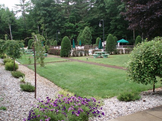 Golden Apple Inn: Garden and Pool Area