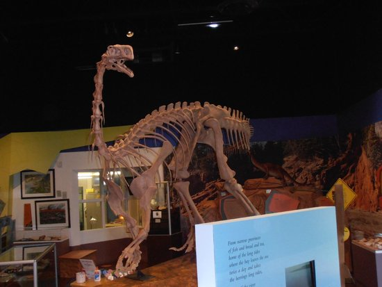 Fundy Geological Museum: Inside dino model