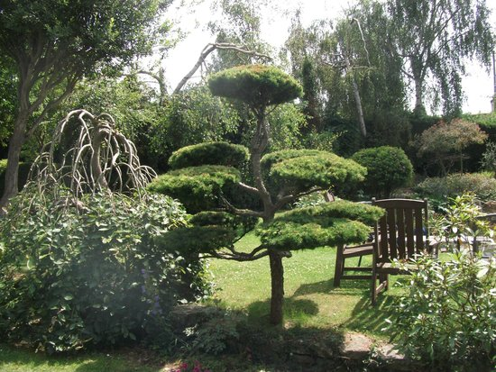 Pure Land Meditation Centre and Japanese Garden: Part of the garden