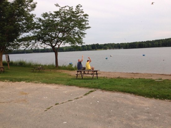 Wildwood Conservation Area: Lake front