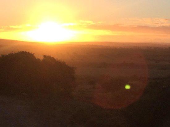 Amakhala Safari Lodge : Sunset game drive