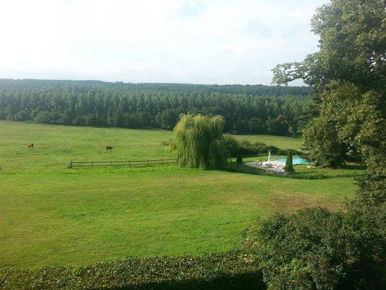 Chateau De La Houssaye: La piscine vue de la chambre