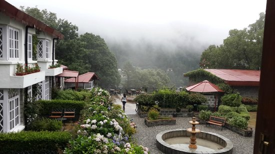 The Naini Retreat: Garden as seen from room