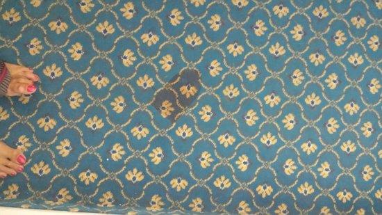 Mahdia Palace Thalasso: moquette tachee