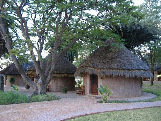 Onguma Bush Camp : Rooms