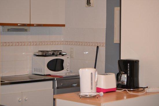 Les Trois Lys : cuisine appartement 702