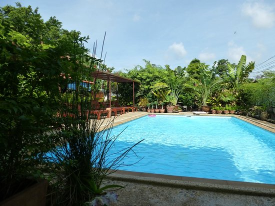 Baan Tebpitak : Great pool for a dip after visiting Ayutthaya