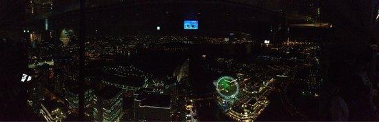 Yokohama Landmark Tower Sky Garden : Great shot of Yokohama