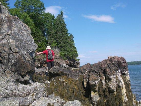 Inn at Bay Ledge : Rocky cliffs along the beach