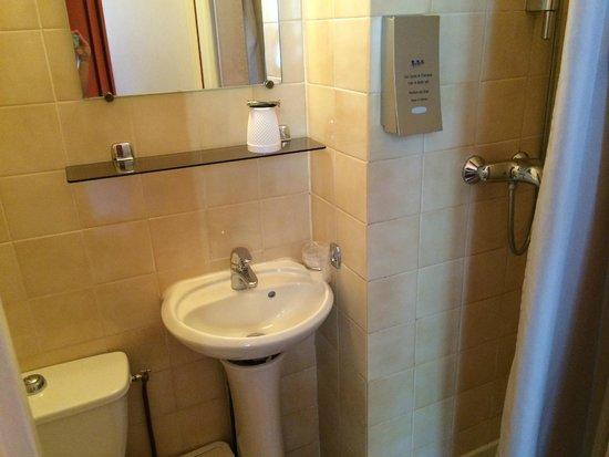 Hotel Alnea: bagno