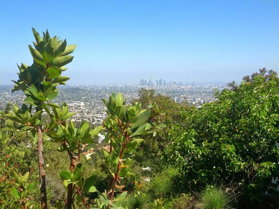 Observatoire Griffith : View of downtown LA