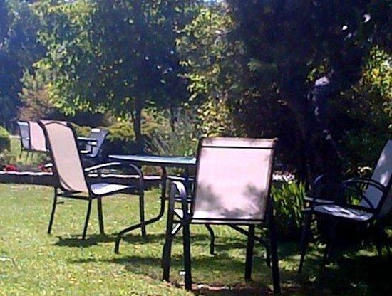 Le petit jardin aménagé - Picture of Hostal Almanzor, Navarredonda ...