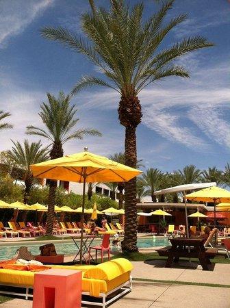 Saguaro Scottsdale: Poolside
