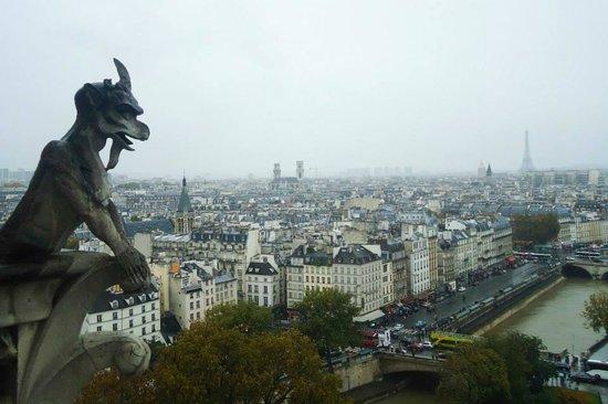 Tours de la Cathedrale Notre-Dame : Vista das Torres da Catedral de Notre Dame
