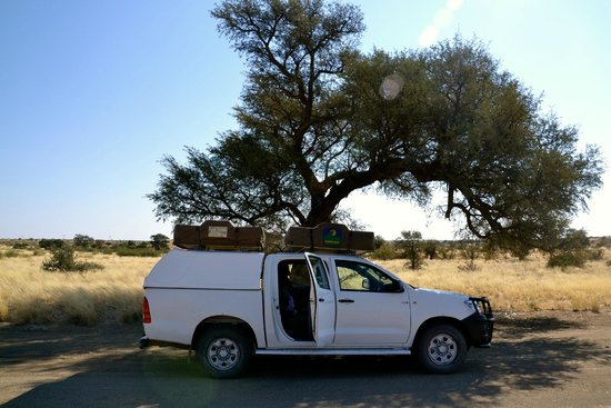 Quivertree Forest Rest Camp : Onze camping
