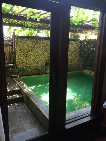 Hotel Tugu Bali : Private pool