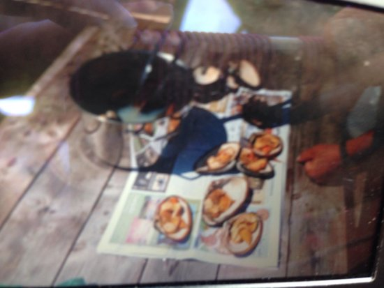 By The Sea Kayaking : Picture of a picture of our calm bounty! Cooked up fresh by paul. Yum. Sorry about the blurry.