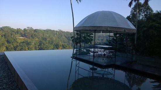 Kupu Kupu Barong Villas and Tree Spa: Infinity pool