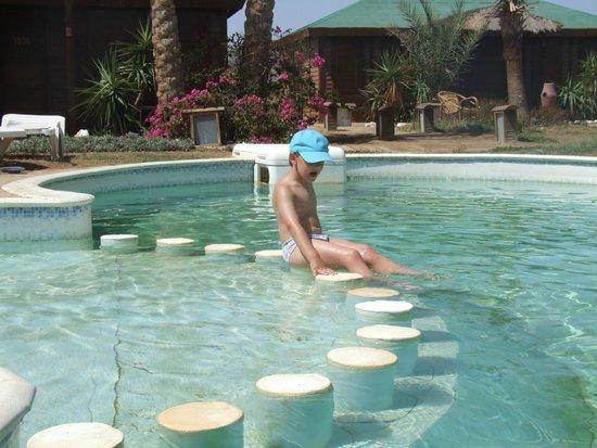Abu Dabbab Lodge: pool