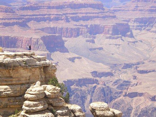 Grand Canyon Tour Company - South Rim Bus Tour : Grand Canyon - day visit