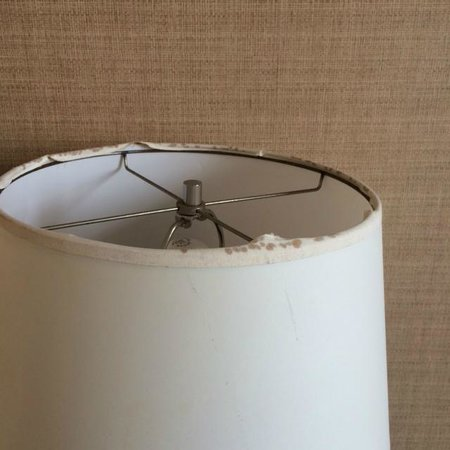 Berkeley Oceanfront Hotel : Another moldy lampshade