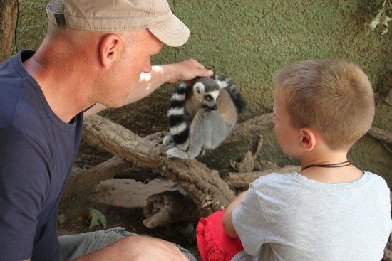 Zoo Castellar: Zoo de Castellar