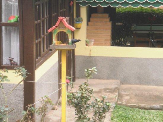 Pousada Canteiros: pássaro fazendo desjejum na pousada
