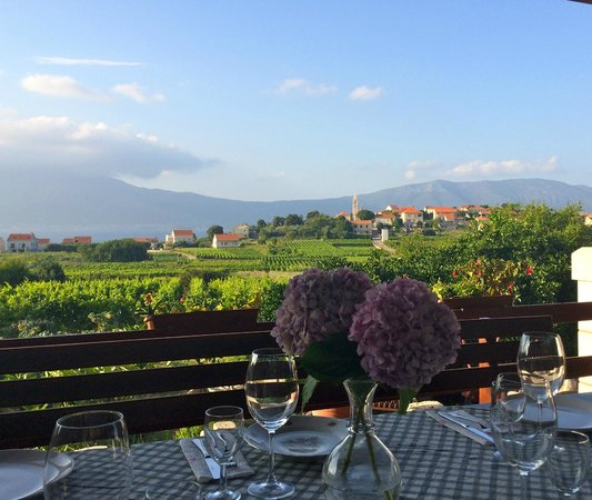 Korcula Explorer: 2nd Vineyard- amazing view!