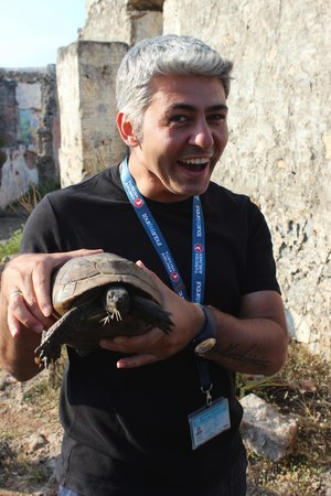 Tolga Kinas Istanbul Tour Guide: Turtle