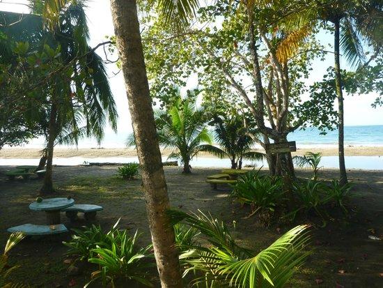 Playa Manzanillo: Playa de Manzanillo