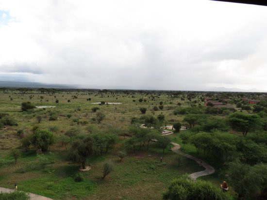 Kilima Safari Camp : Vue de la tour