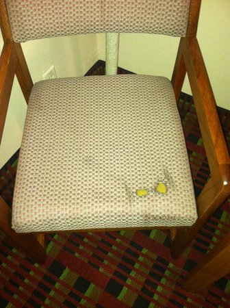 Days Inn by Wyndham Myrtle Beach: Chair with cigarette burns.