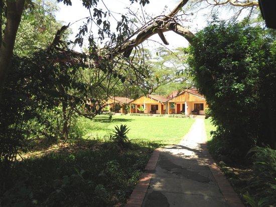 Lake Naivasha Country Club-Sun Africa Hotels : Country club navaisha
