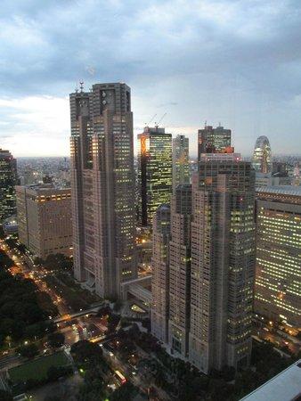 The Peak Bar: View of Tokyo.