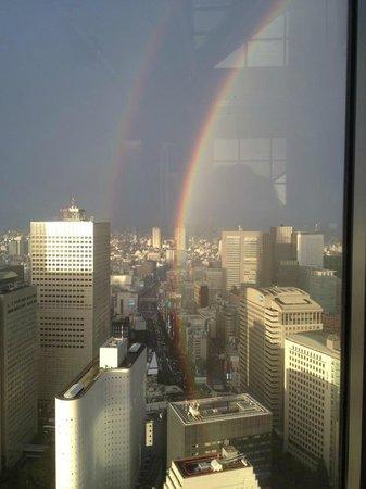 The Peak Bar: Rainbow over Tokyo.