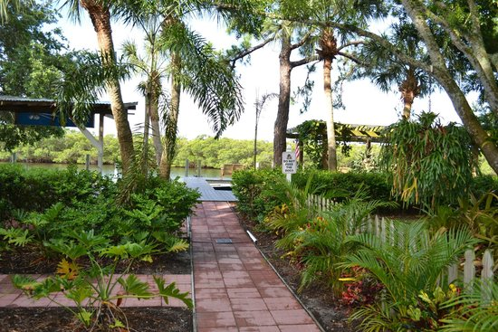 Pirates Pointe Resort : Beautiful grounds with lush landscaping