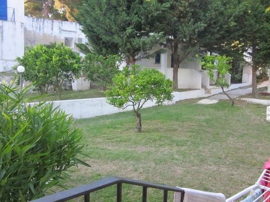 Villaggio Turistico Sant'Andrea: Parco