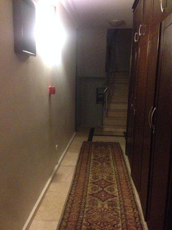 Tria Hotel Istanbul : Dingy corridors