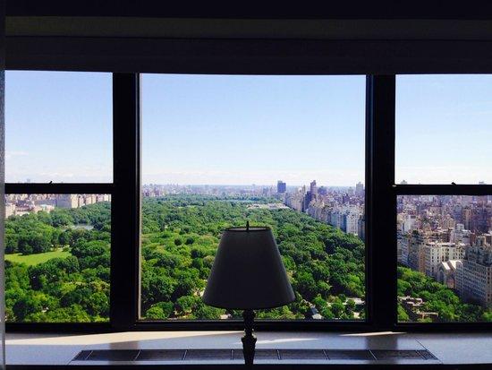 Park Lane Hotel: Central Park View