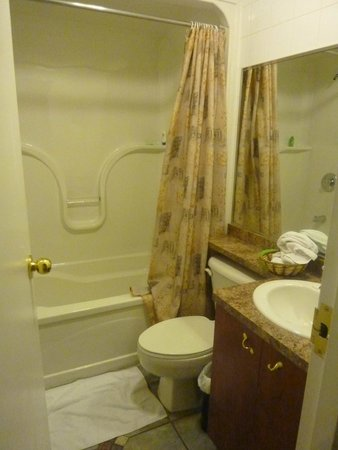 Hotel & Suites Les Laurentides : bathroom