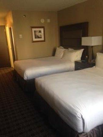 Hilton Crystal City at Washington Reagan National Airport: Room