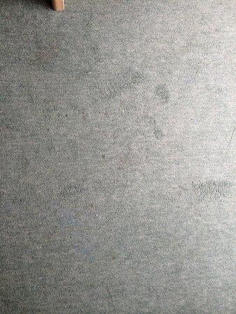 Hotel Hirsch: Dirty carpet