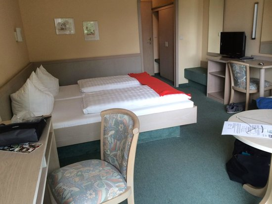 Hotel Hirsch: Room